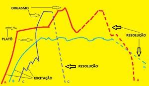 Fases-biológicas-da-resposta-sexual-humana-04